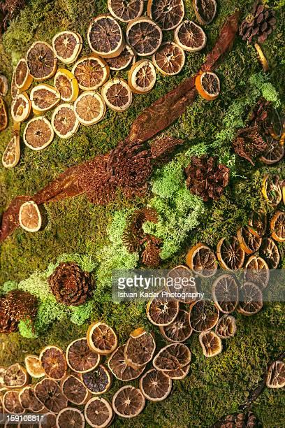 Moss, Cones & Oranges