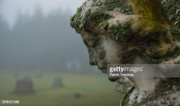 moss covered angel - grabstein stock-fotos und bilder