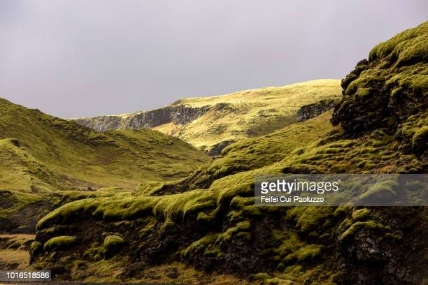 moss covered lava plain eldgja,  south of iceland - lava plain stock pictures, royalty-free photos & images