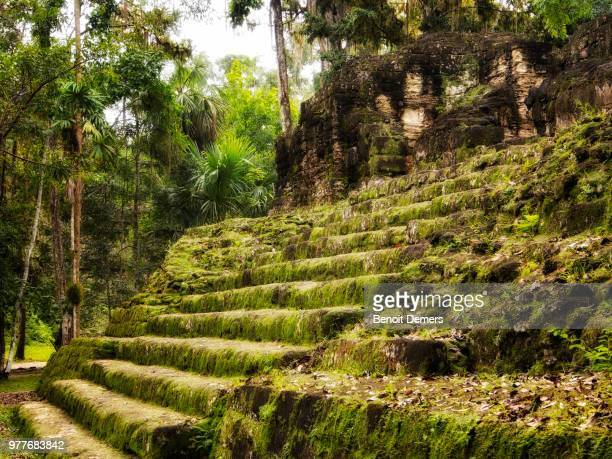 moss covered maya ruins steps, guatemala - old ruin stock photos and pictures