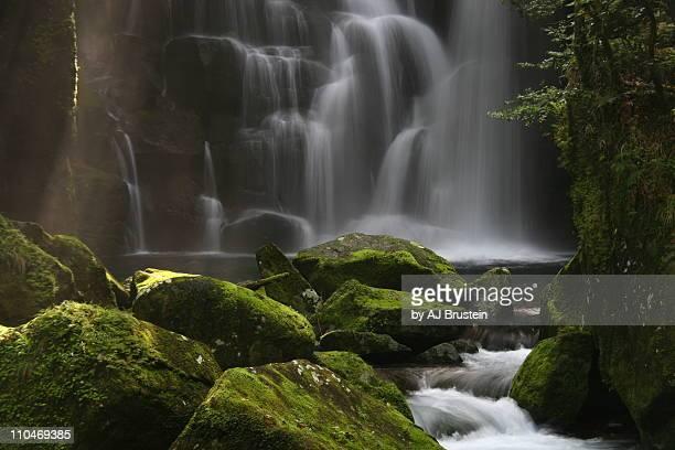 moss covered waterfall - präfektur wakayama stock-fotos und bilder