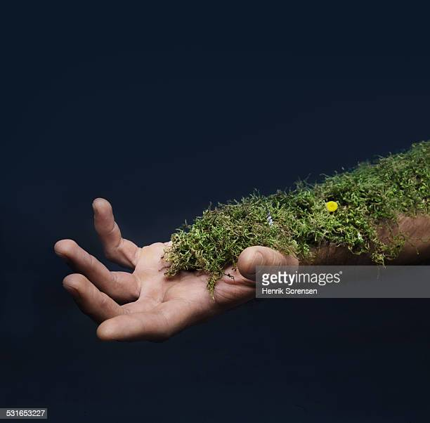 moss growing on arm