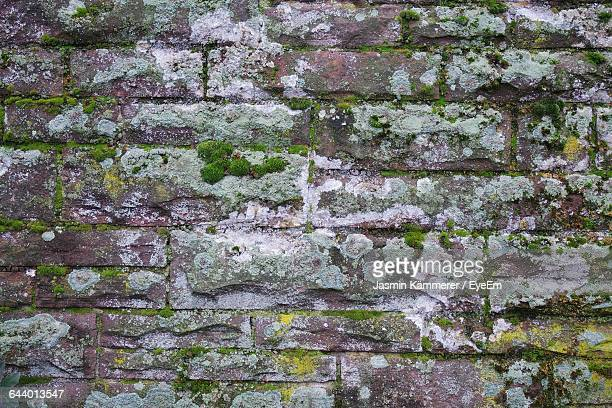 moss growing on stone wall - stone wall stock pictures, royalty-free photos & images