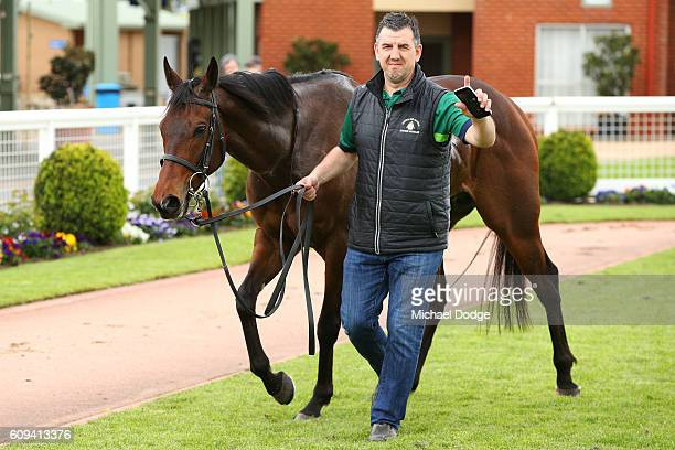 Moss 'n' Dale after winning No 1 Car Wash BM78 Handicap at Sale Racecourse on September 21 2016 in Sale Australia