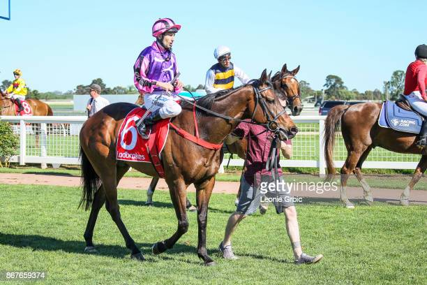 Moss 'n' Dale ridden by Anthony Darmanin returns after winning the Ladbrokes Sale Cup at Sale Racecourse on October 29 2017 in Sale Australia