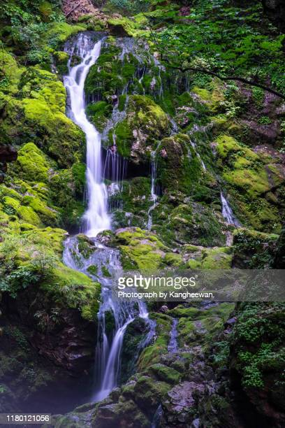 moss valley in korea - gangwon province stock pictures, royalty-free photos & images