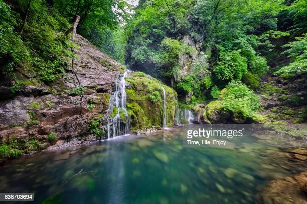 Moss waterfalls