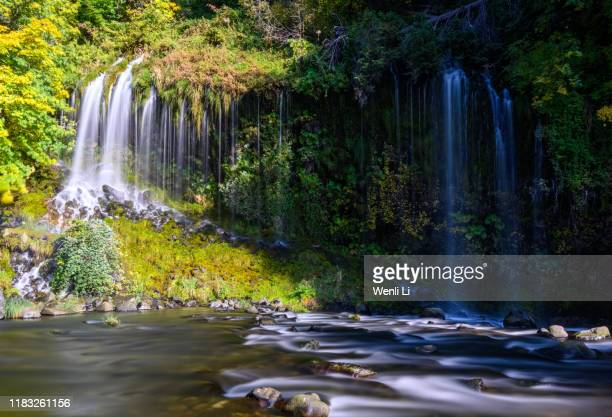 mossbrae falls - mt shasta stock pictures, royalty-free photos & images