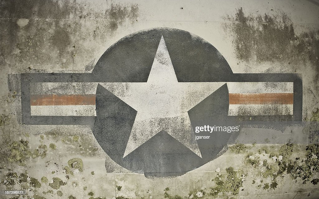 Mossy Air Force Insignia : Stock Photo