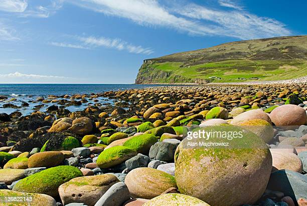 Mossy giant rounded cobblestones on beach at Rackwick, Isle of Hoy, Orkney Islands, Scotland, UK