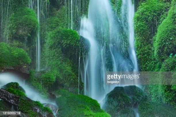 mossy rocks and spring water - isogawyi stock-fotos und bilder