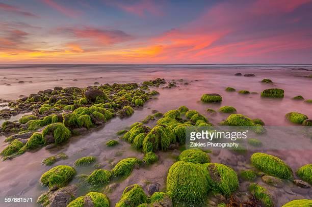 Mossy Rocks At Batu Luang Kuala Penyu, Sabah