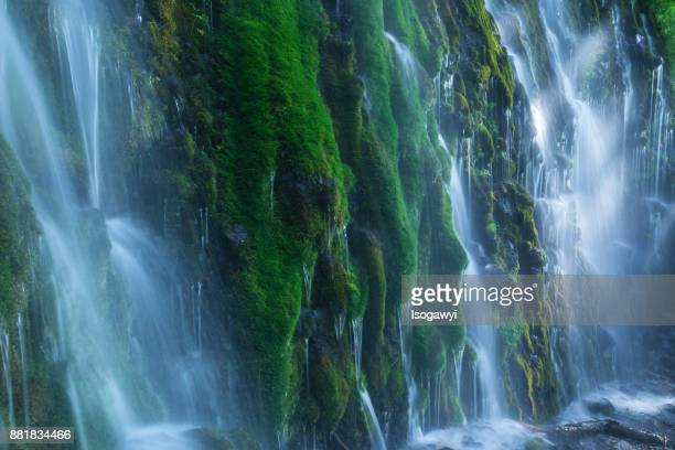 Mossy waterfalls with sunlight