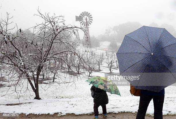 A mother and a son visit the Botanic Garden as snow falls in the New South Wales central west town of Orange early on July 16 2015 This is the second...