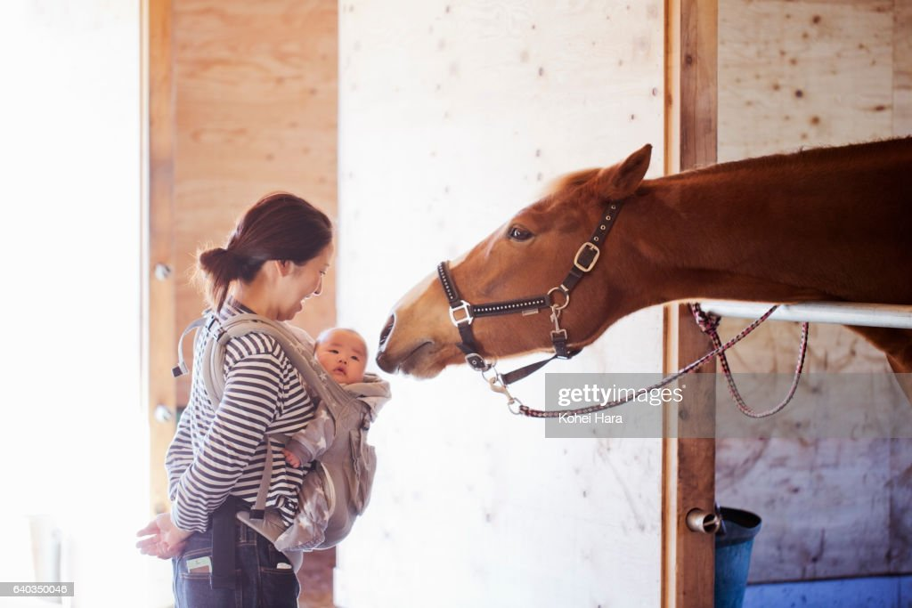 Mother and baby communicating with horse in the stable : Stock Photo