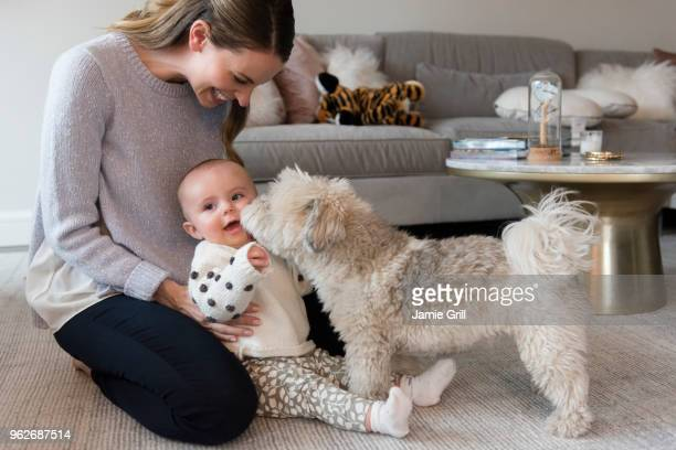 Mother and baby daughter (18-23 months) playing with dog in living room