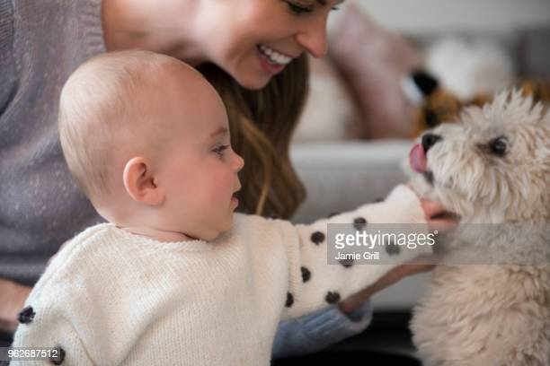 Mother and baby daughter (18-23 months) playing with dog
