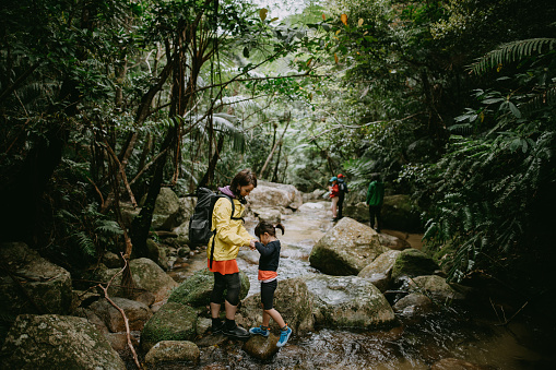 Mother and child hiking in jungle, Ishigaki Island, Okinawa, Japan - gettyimageskorea
