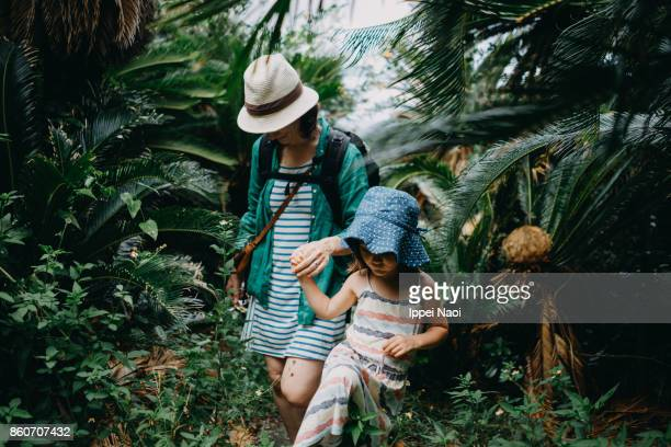 mother and child hiking in jungle of sago palms, japan - tropical rainforest stock pictures, royalty-free photos & images