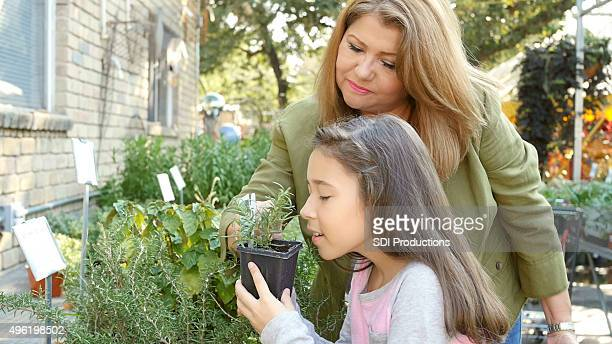 Mother and child shopping for herbs and vegetable plants