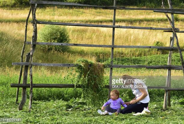 Mother and child sitting in a meadow in front of a hay drying rack Bocicoel Maramures Romania