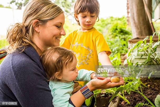 Mother and children admiring vegetable in garden