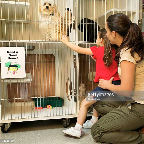 Mother and daughter at animal shelter