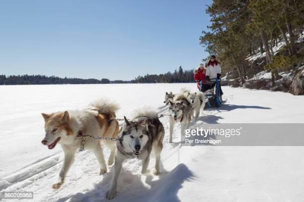 mother and daughter dog sledding in minnesota - 犬ぞりに乗る ストックフォトと画像