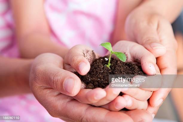 Madre e hija bebé sosteniendo una planta