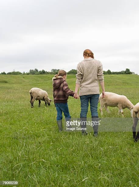 Une mère et sa fille dans un champ avec mouton