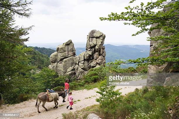 mother and daughter on a donkey hike, cevennes, mont lozere, france, europe - cevennes photos et images de collection