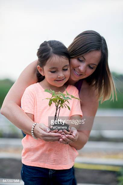 Mother and Daughter Planting a Garden