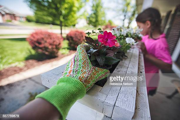 mother and daughter planting flowers - personal perspective stock pictures, royalty-free photos & images