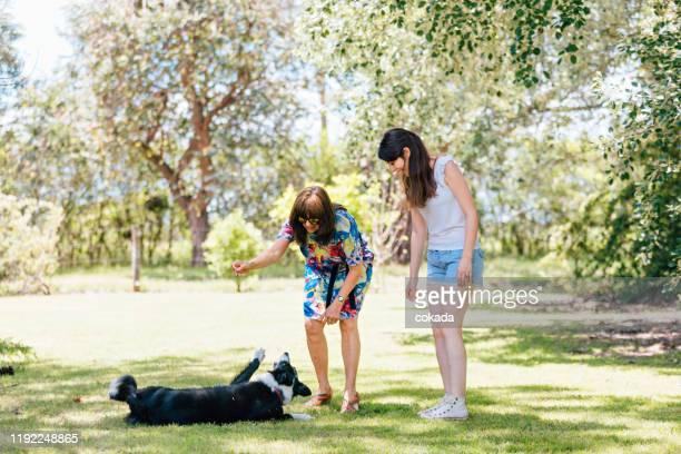屋外で犬と遊ぶ母と娘 - 動物調教師 ストックフォトと画像