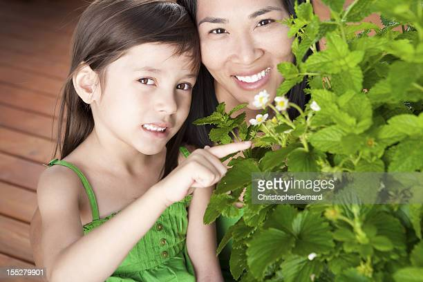 mother and daughter pointing at mint leaves - mint plant family stock pictures, royalty-free photos & images