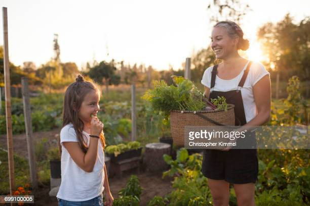 A Mother And Daughter Share A Fun Moment While Harvesting Vegetables In The Garden