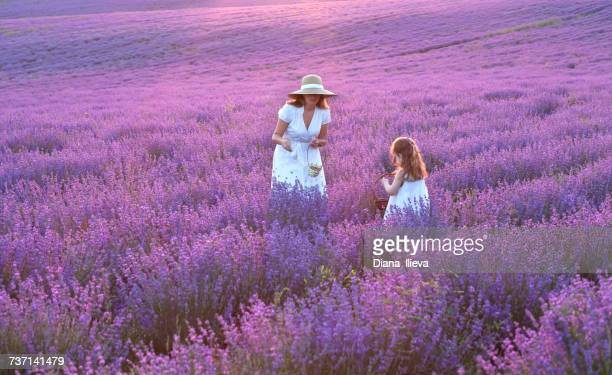 Mother and daughter standing in a lavender field, Bulgaria