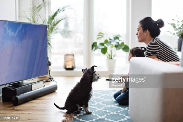 mother and daughter watching television while sitting with dog on floor at home - einzelnes tier stock-fotos und bilder