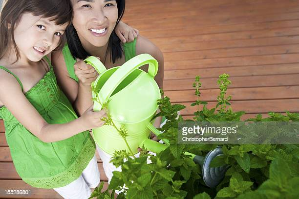 mother and daughter watering pot of herbs - mint plant family stock pictures, royalty-free photos & images