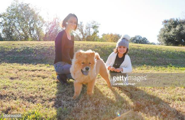 mother and daughter with puppy - chow stock pictures, royalty-free photos & images