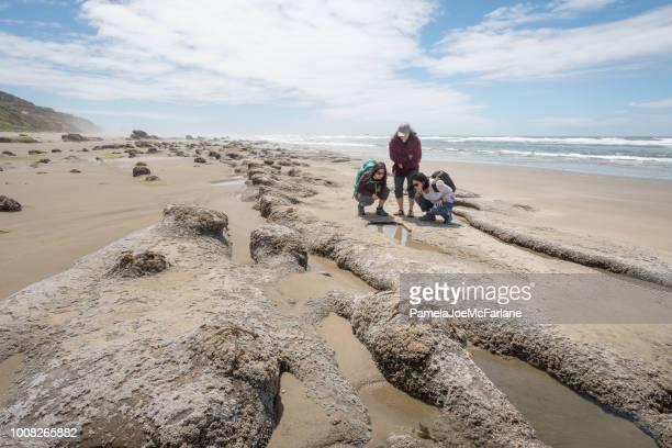 mor och döttrar undersöka havet liv i tidvatten pool, oregon - tidvattensbassäng bildbanksfoton och bilder