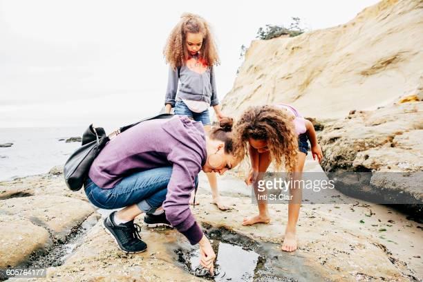 mother and daughters examining tide pools on beach - tidvattensbassäng bildbanksfoton och bilder