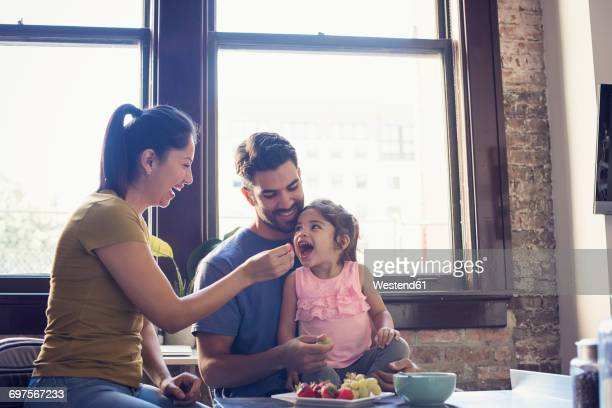mother and father feeding their little daughter in kitchen - young family stock pictures, royalty-free photos & images