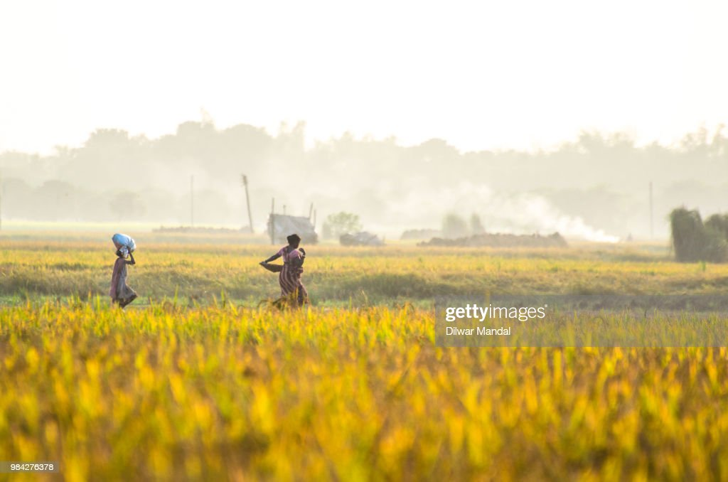 A mother and her daughter returns from field : Stock Photo