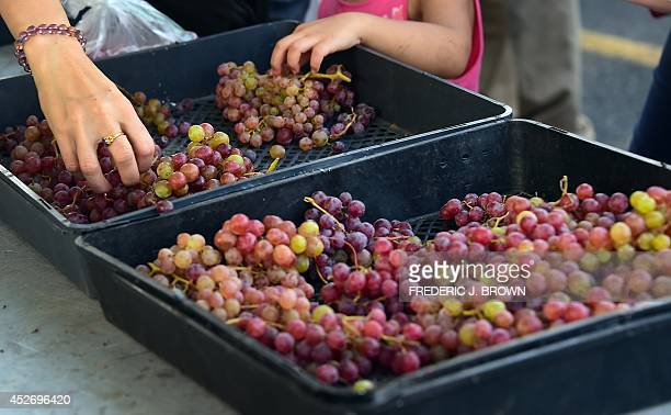 A mother and her daughter shop for grapes at Monterey Park's Friday evening Farmers Market in Monterey Park California on July 25 2014 With the first...