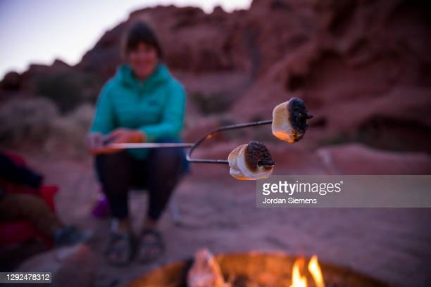 """a mother and her son cooking s""""u2019mores over a campfire. - las vegas stock pictures, royalty-free photos & images"""