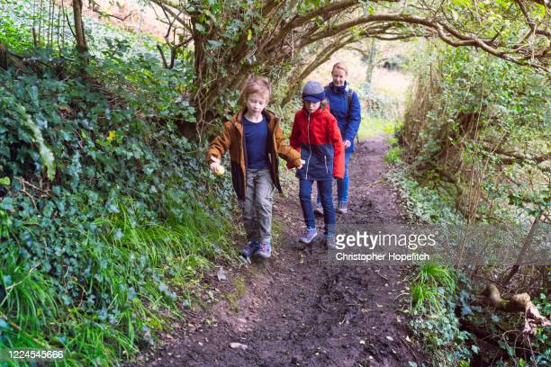 a mother and her young sons hiking along a muddy footpath - outdoor pursuit stock pictures, royalty-free photos & images