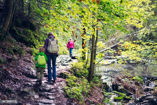 Mother and kids hiking in beautiful forest