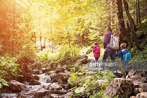 Mutter und Kinder Wandern im sonnigen Wald