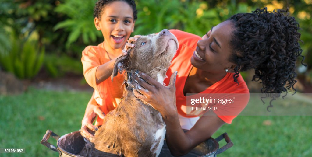 Mother and son bathing dog : Stock Photo